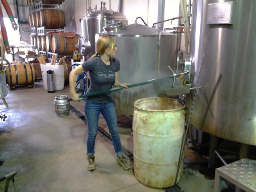 Tiffany removing spent grains from the mash tun